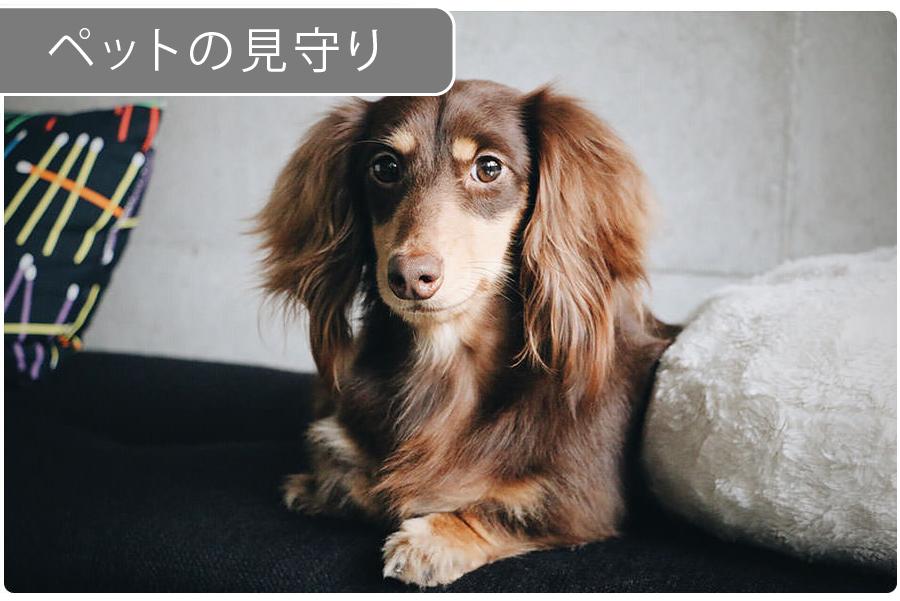 eRemote mini|IoT 家電 スマートホーム・スマートハウス|Link Japan画像13