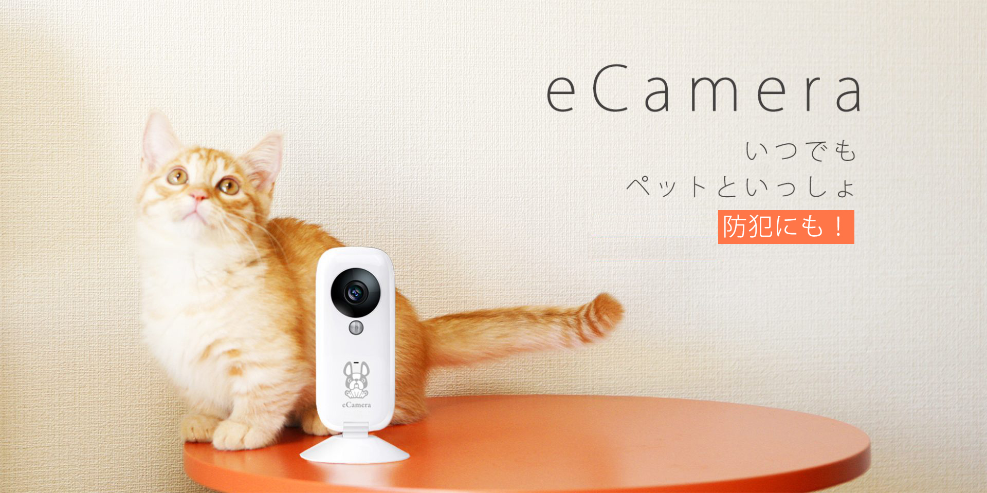 eCamera|IoT 家電 スマートホーム・スマートハウス|Link Japanメイン画像