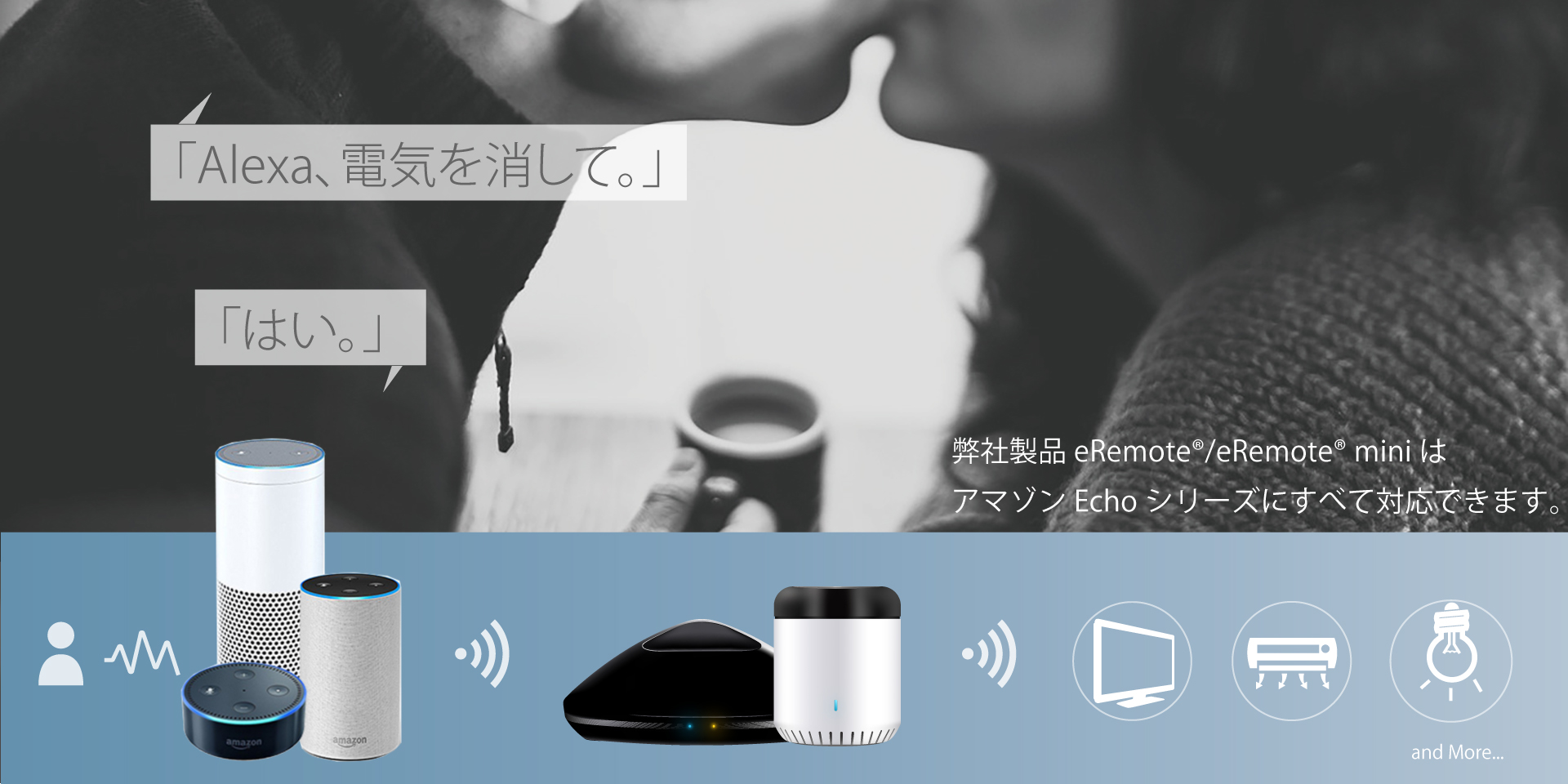 Google alexa & Remote & Remote mini
